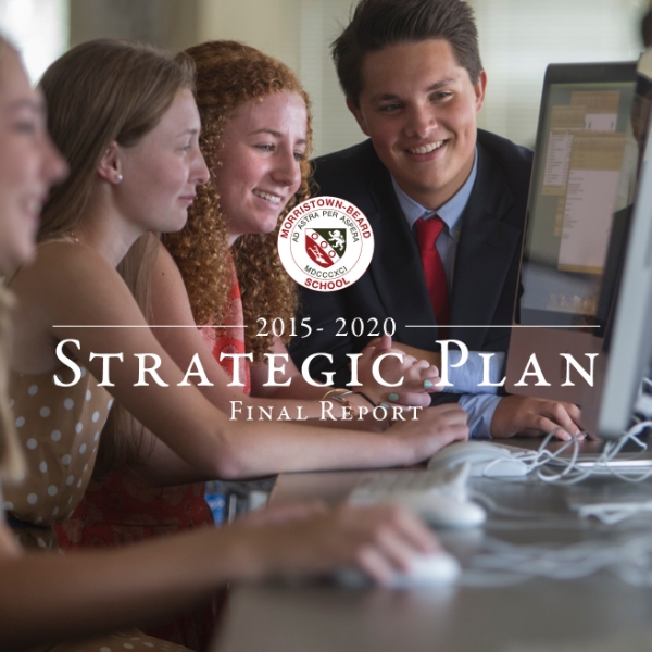 2015-2020 strategic plan